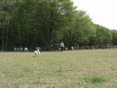2008_05090039.jpg