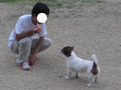 2008_06210137.jpg