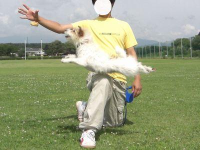 2008_07150132.jpg