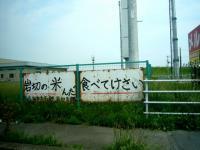 20080611 004