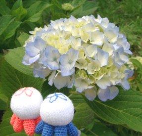 flower5-6.jpg