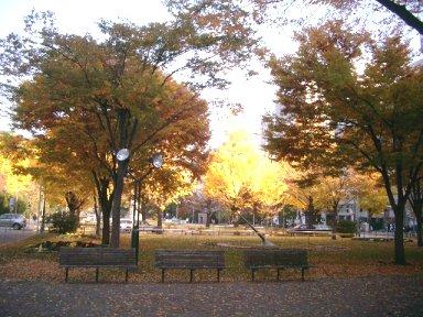 leaves3-5.jpg