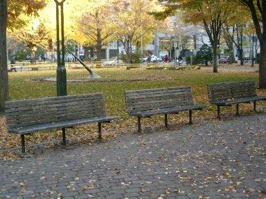 leaves3-6.jpg
