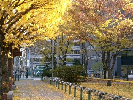 leaves3-7.jpg