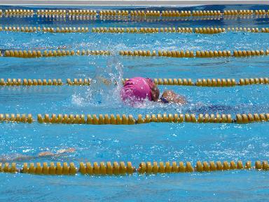 メセナ水泳大会