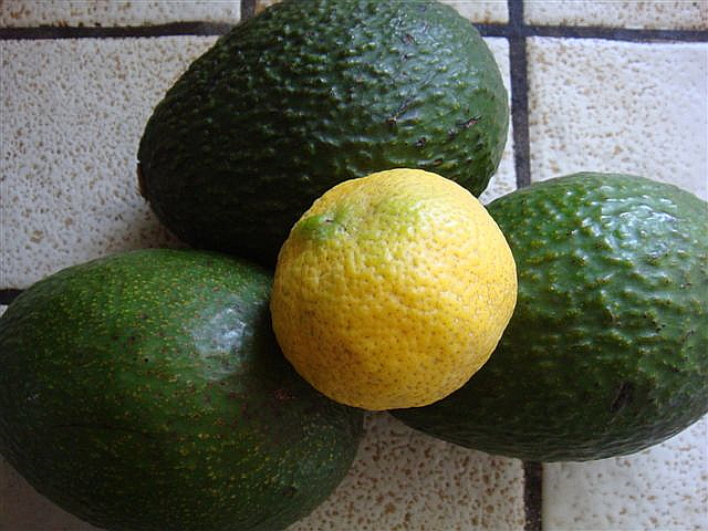 Avocados and Lime for Guacamole