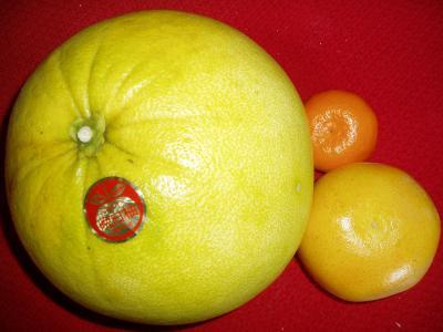晩白柚 その1