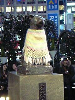 忠犬ハチ公の冬服!?毛糸で編んだショールを羽織ってました☆(≧∇≦)