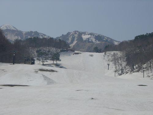 2009_0413AB.jpg