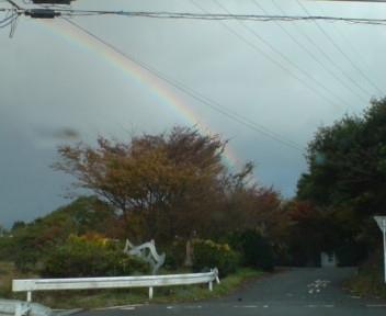 DSC00056虹