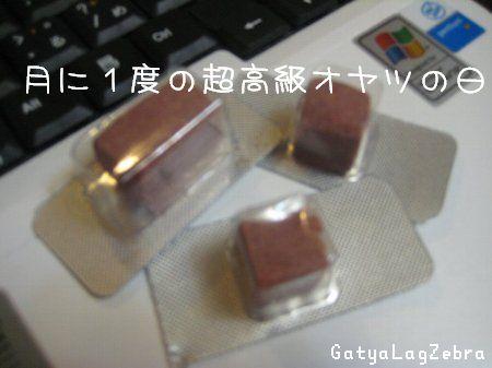 2_20080701205442.jpg