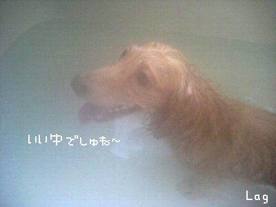 38_20080704150705.jpg