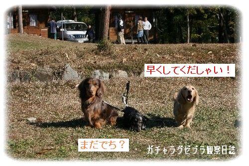 IMG_4000.jpg