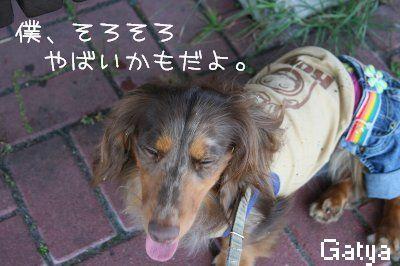 IMG_8837.jpg