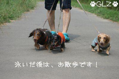 IMG_9064.jpg