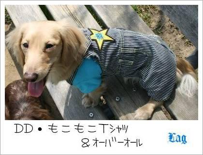 fuku4.jpg