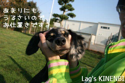 lag1-36.jpg