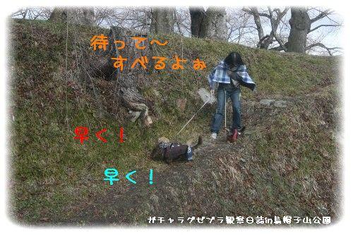 yamagata6.jpg