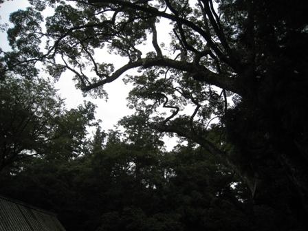 鳥羽旅行 伊勢神宮2