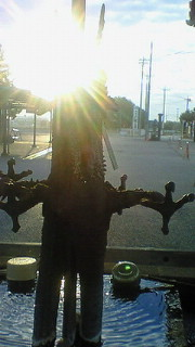 20081103095649