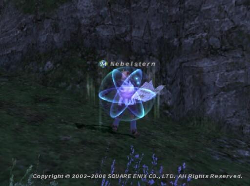 Neb080526044010a.jpg