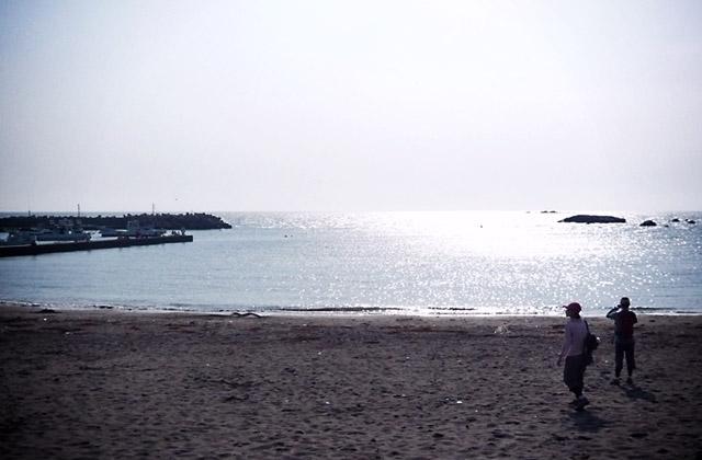 090509hayama_14.jpg