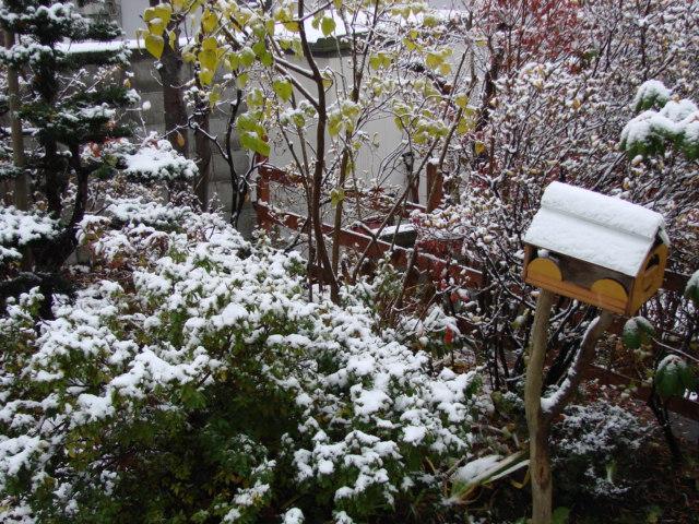 雪の朝 002