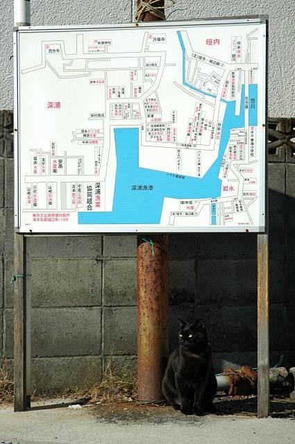 fukaichi.jpg