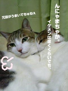 008_2.jpg