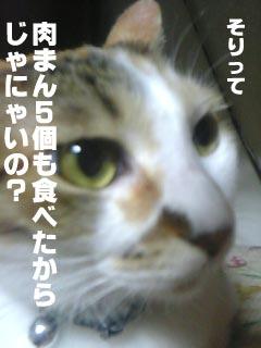 016_2.jpg
