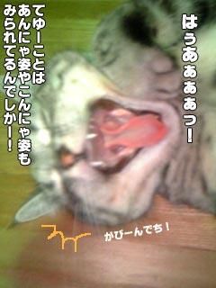 018_2.jpg