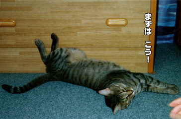 107_3.jpg