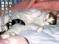 115_1.jpg