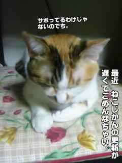 118_1.jpg