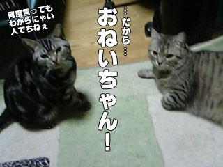 120_6.jpg