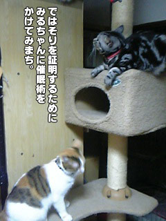 137_2.jpg