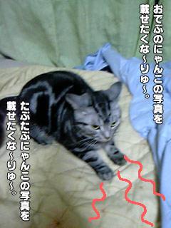 140_2.jpg