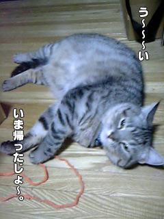 152_01.jpg