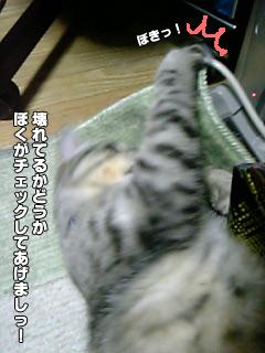 159_2.jpg
