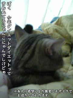 162_1.jpg