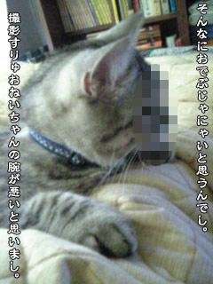 162_2.jpg