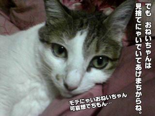 167_6.jpg