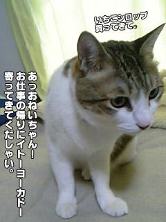 174_4.jpg