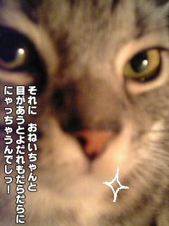 176_5.jpg