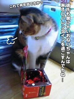 177_1.jpg