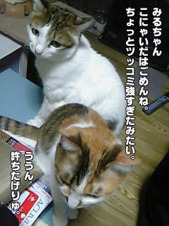 182_01.jpg