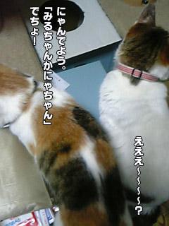 182_05.jpg
