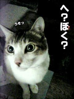 182_10.jpg
