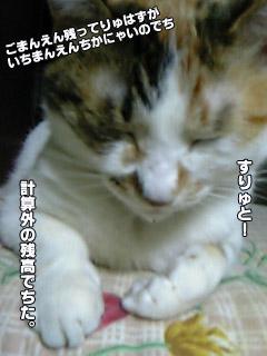 185_3.jpg