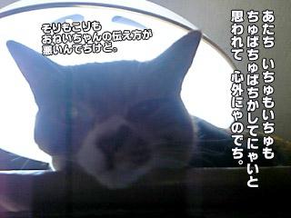 187_2.jpg